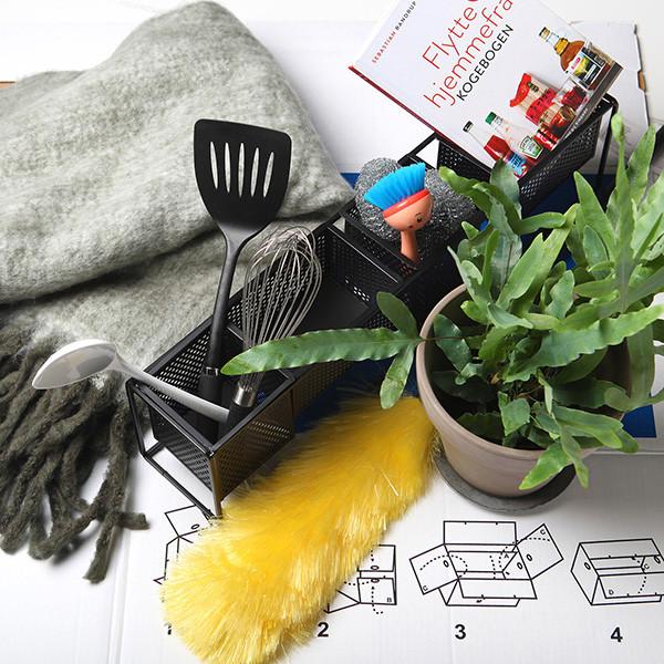 At flytte hjemmefra: Hjælp til en god start