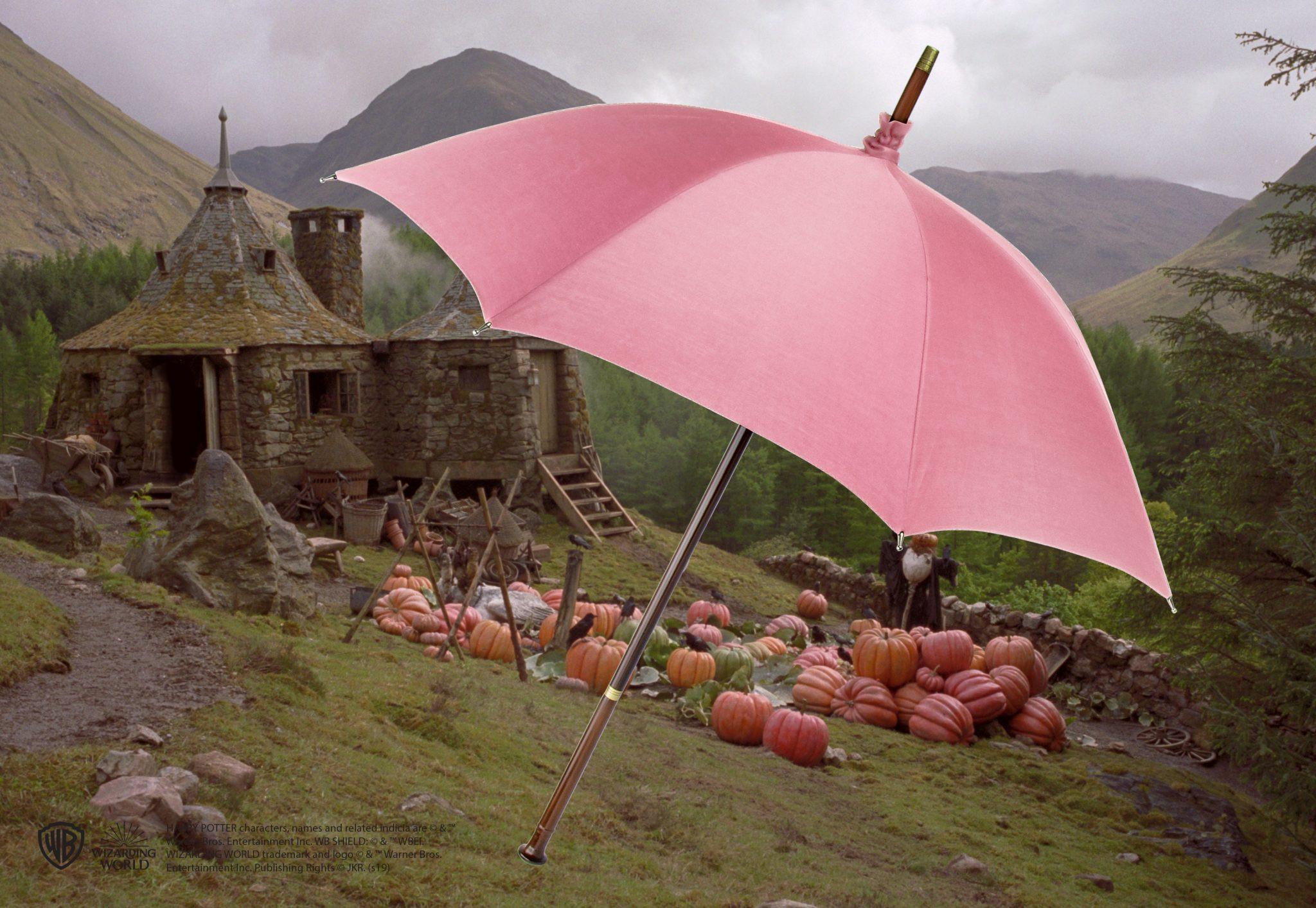 Rubeus Hagrid esernyő és varázspálca