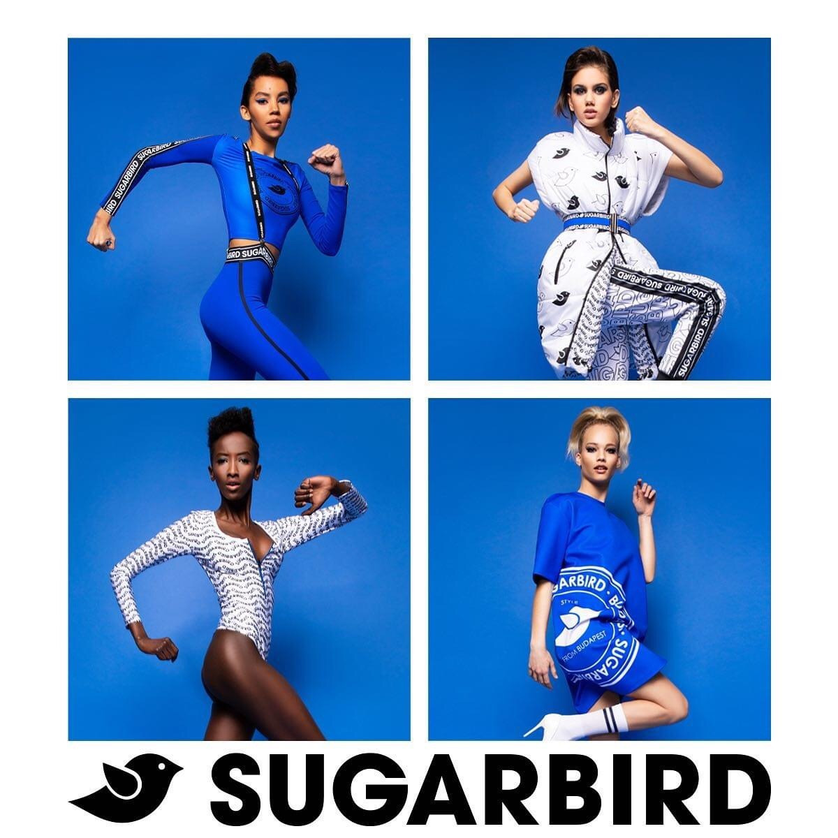 Sugarbird Budapest Collection 💙